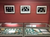 Au dessus des vitrines du Club 'Les ammonites du Bajocien normand' et 'les fossiles de Grignon', 3 tirages en N&B des planches de Delphin réalisés par Christian Brion Pdt du Club Objectif Image Paris.