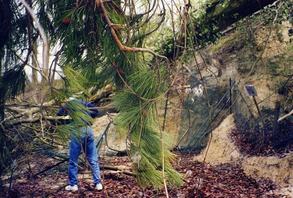 24- Notre fouille après la tempête de 1999