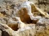 Loges cristallisées - Photo Aude