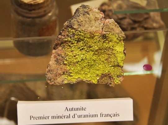Museum Autun - Autunite