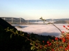 06-01 Entre La Cavalerie et Millau, arrêt au belvédère de vision panoramique sur la vallée de la Dourbie, Millau et le viaduc