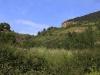 11-04 Rivière sur Tarn: Domérien, ravin un peu accidenté, puis schistes cartons du Toarcien inférieur (le matin)