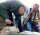Jean Pierre et Tadeusz aux prises avec un oursin!