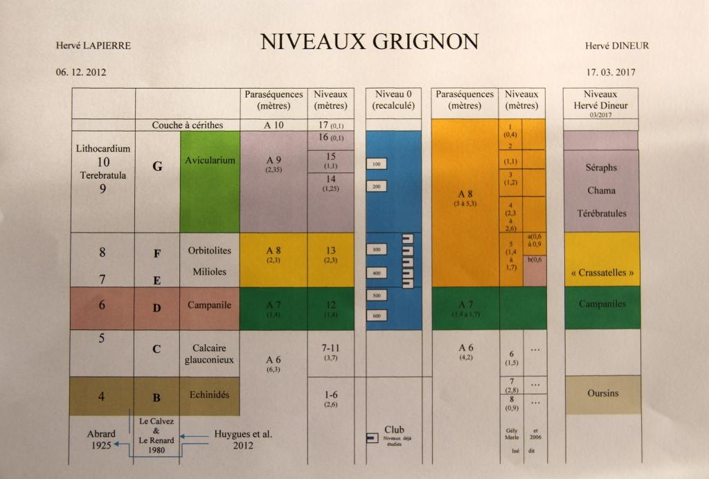 Synthèse des coupes de Grignon - Apport Hervé Dineur - 2017