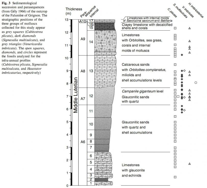 Grignon, coupe Sédimentologique et paraséquences Huyghe et al - 2012