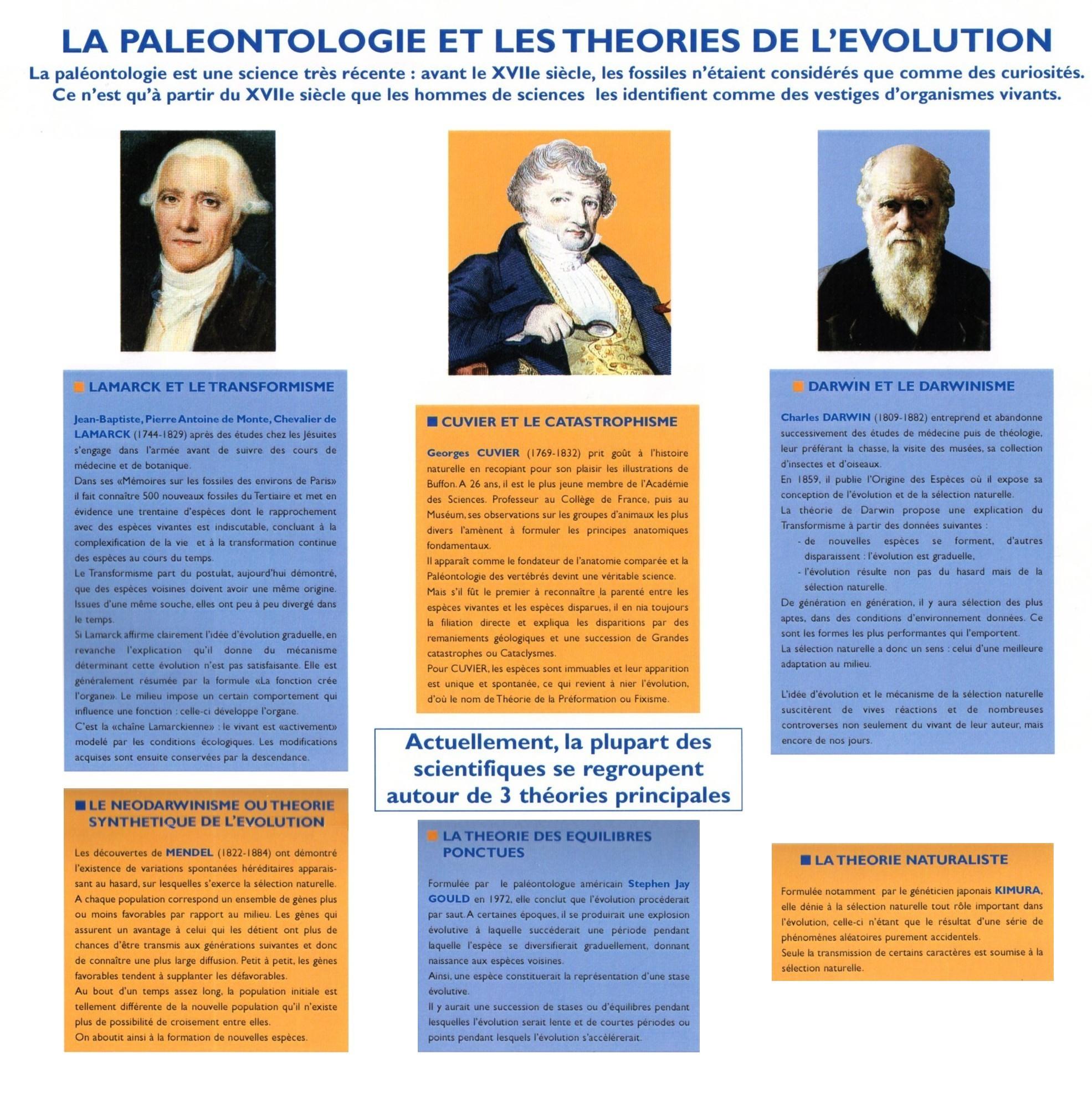 Les théories de l'Evolution