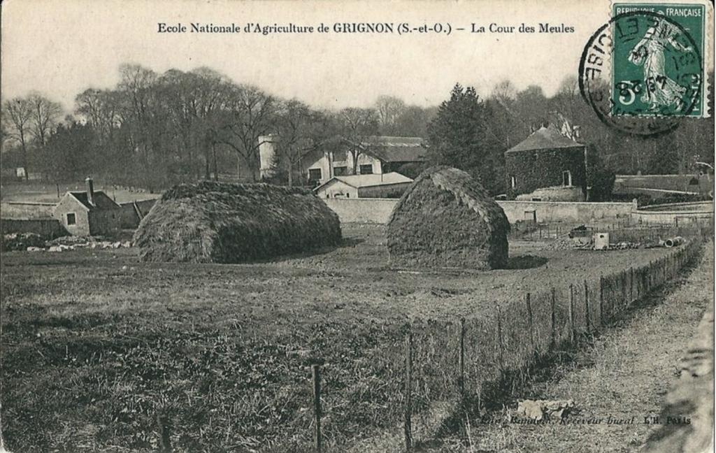 Grignon - La cour des meules et le pigeonnier. Carte postale collection Maryse Le Gal