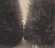 Grignon - Allée des épicéas. Carte postale collection Maryse Le Gal