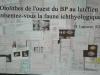 25-05-2014-25-ans-de-grignon-67-1024x632