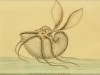 "George Shaw rédacteur ""The Naturalist's Miscellany"" n33 (1792), Frederick Polydore Illustrateur - Argonaute papiracé"