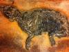 messel 2013 - Propaleotherium parvulum (petit cheval archaïque) - Photo jacques Dillon