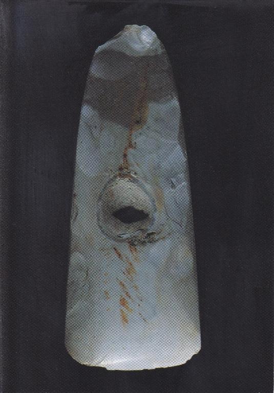 Hache polie NEOLI - JOIGNY 89