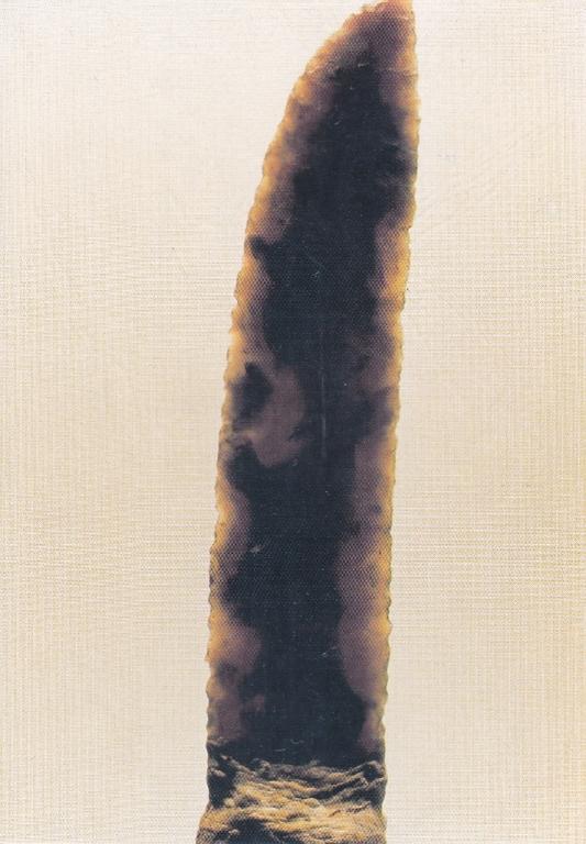 Hache polie NEOLI - SENS 89