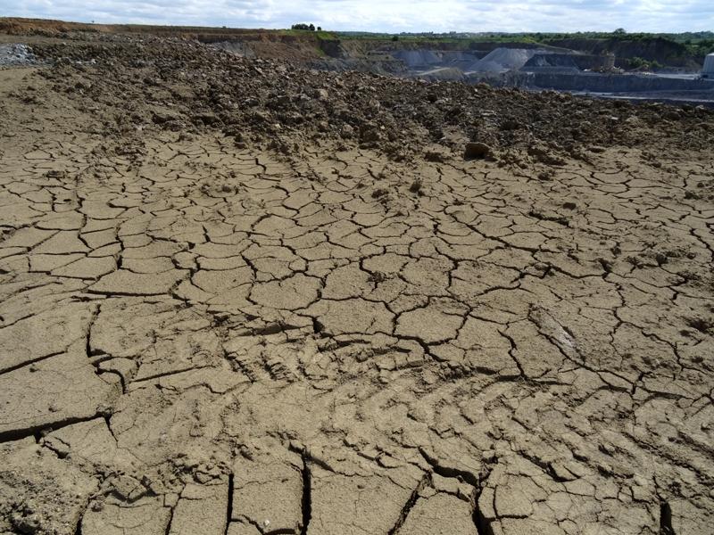 Mud-cracks actuelles
