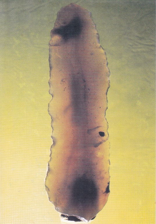 Paléolithique supérieur, lame Bords de Loire (58)