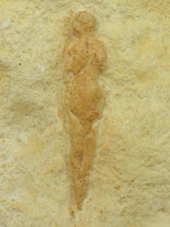"""Figurine féminine dite """"Vénus Pataud"""" sclptée sur un bloc de calcaire découverte en 1958 dans l'abri Pataud dans le village des Eyzies (Dordogne) - 22000 BP - H=20 cm"""