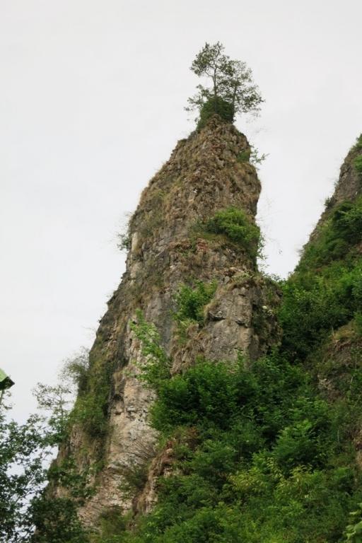 DP_Dolomites de Gerolstein-Aiguille