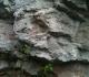HQ_Dolomites de Gerolstein-AspectDolomite