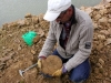 Très belle ammonite, hélas fracturée au dégagement, mais néanmoins réparable et digne de figurer dans la collection de M. Jacques Dillon.  Photo Aude Bouillé