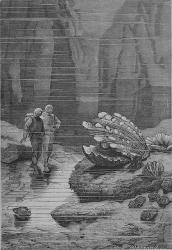 La grotte. Illustration par Alphonse de Neuville. Gravé par Hildibrand J. -Hetzel, 1870.
