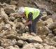 Hervé aux prises avec une ammonite.....