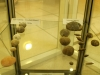 Oursins de Safi, Tafelney, Taroudant, Imouzzer (Maroc)